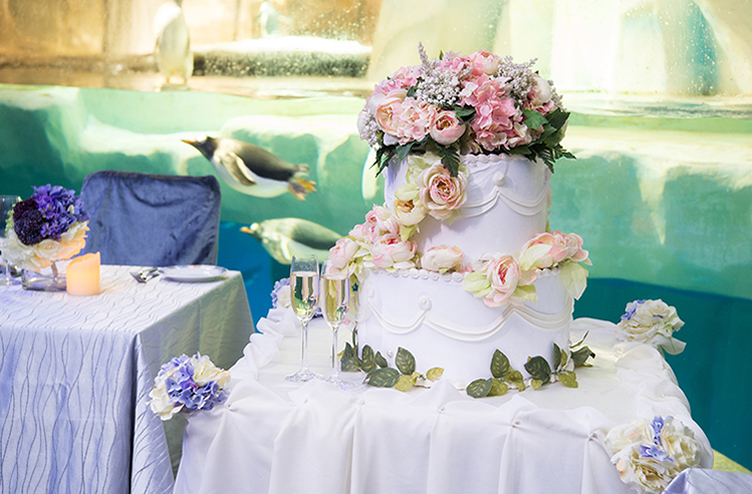 Wedding ceremonies ocean park hong kong 1 tuxedos restaurant our inquisitive penguin family might just join your feast junglespirit Choice Image